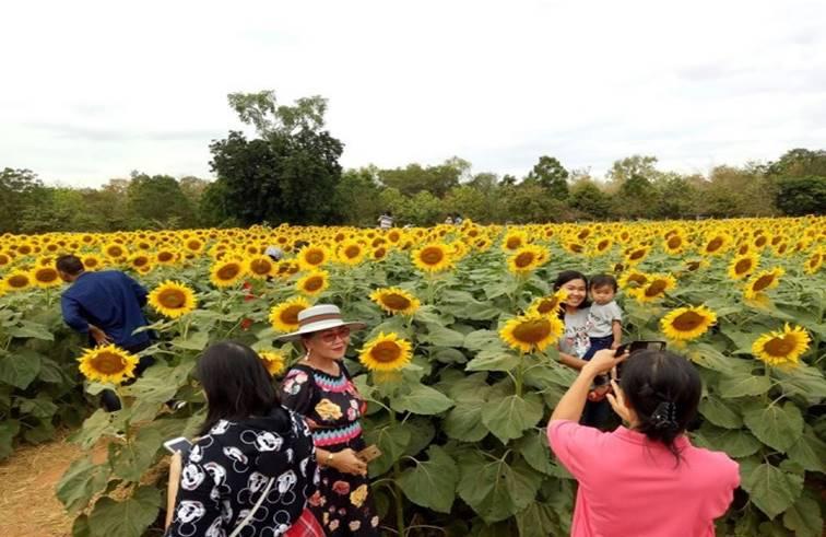 โคราชจัดใหญ่ เปิดสวนเกษตร สวนดอกไม้