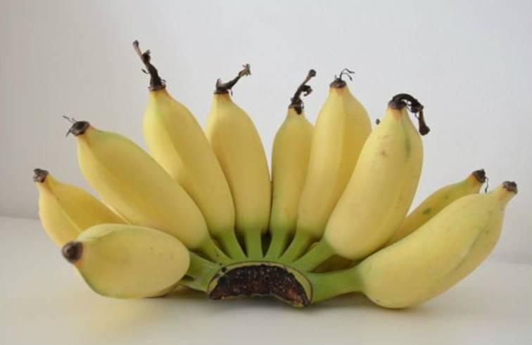 เผย 3 สูตร บอกลาหน้าเเก่ให้อ่อนวัย ด้วยกล้วยน้ำว้าสุก