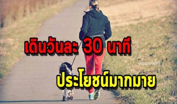 ข้อดีของ การเดินแค่วันละ 30 นาที