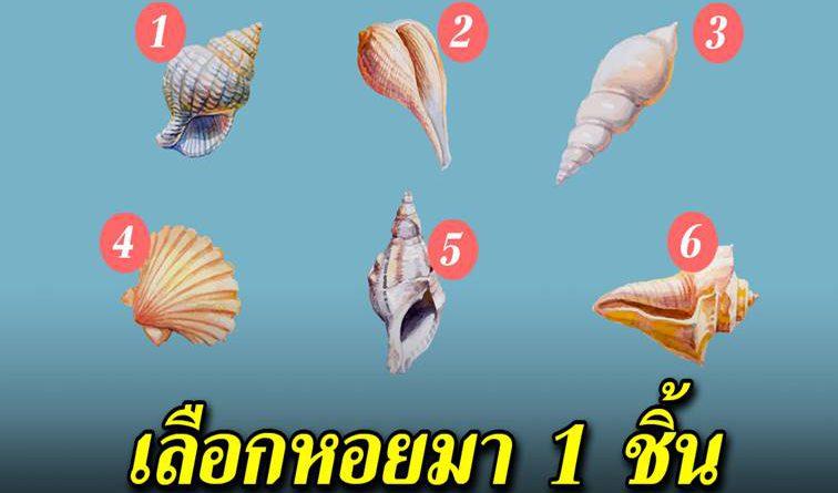 เลือกเปลือกหอยที่สะดุดตาที่สุด จะบอกนิสัยและลักษณะคู่ครองของคุณได้