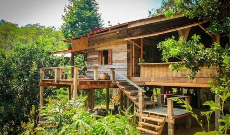ไอเดียบ้านไม้แบบโบราณ สวยถูกใจ ล้อมรอบด้วยธรรมชาติ