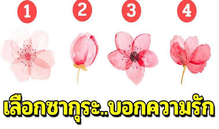 เลือกดอกซากุระมา 1 ดอก บอกถึงลักษณะความรักของคุณได้