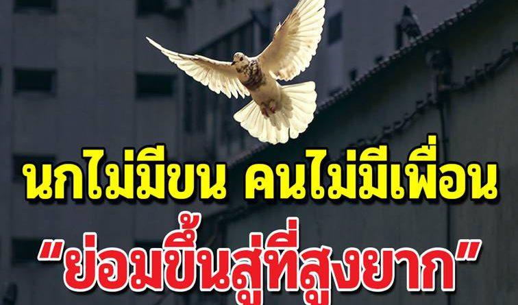 """เตือนสติคน """"นกไม่มีขน คนไม่มีพวก ย่อมขึ้นที่สูงได้ยาก"""""""