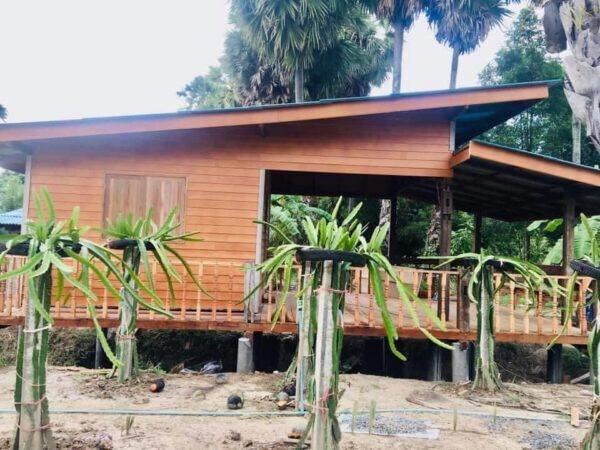 บ้านไม้สไตล์โมเดิร์น ขนาดกะทัดรัด เหมาะสร้างไว้ในสวน งบ 125000