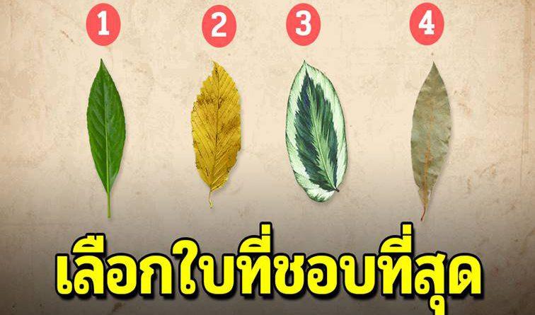 ใบไม้ใบไหน คุณชอบที่สุด มันจะบ่งบอกถึงจิตใจแท้จริงของคุณ