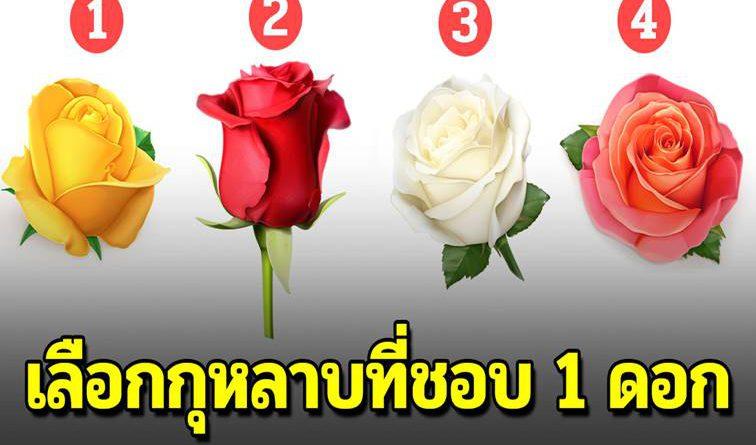 เลือกดอกกุหลาบ 1 ดอก แสดงถึงนิสัยที่แอบอยู่ข้างใน ว่าเป็นอย่างไร