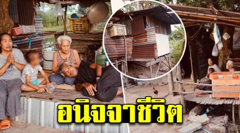 4 ชีวิตอาศัยเบี้ยคนพิการ-คนชราประทังชีวิต อยู่ในเพิงเล็ก ๆ ที่ผู้ใจบุญปลูกไว้ให้หลบแดดหลบฝน