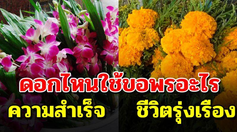 ดอกไม้บูชาพระ แต่ละดอกจะมีความหมาย..ขอพรเรื่องไหน ใช้ดอกอะไร